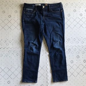 Pilcro and The Letterpress No. 32 Stet jeans